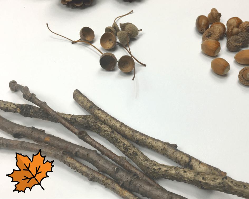 aus der Natur: Eine einfache Herbstidee